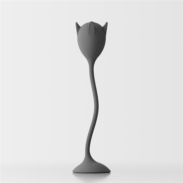 Tulipan appendiabiti da terra - grigio