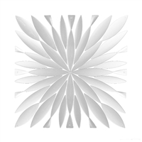 VedoNonVedo Daisy big decorative element for furnishing and dividing rooms - transparent